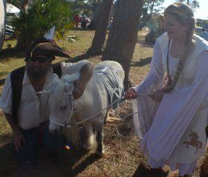A Therapy Unicorn
